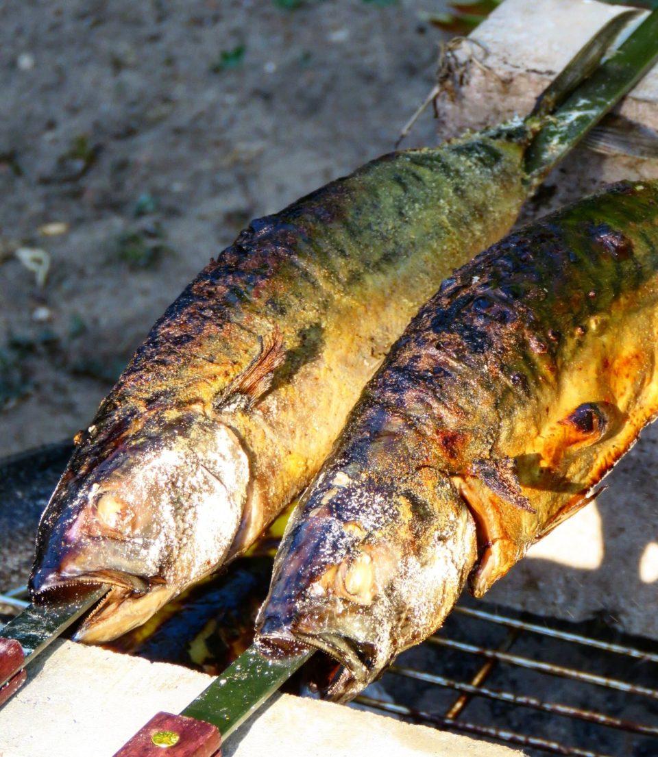 Makrelen als Steckerlfisch