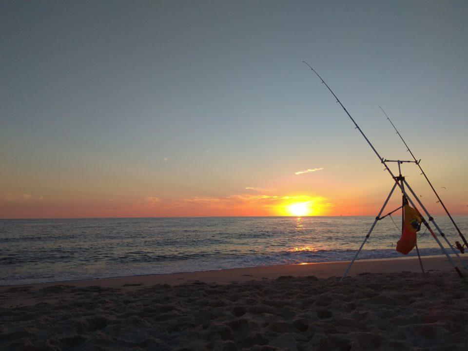 Brandungsangeln zum Sonnenuntergang in Hvide Sande