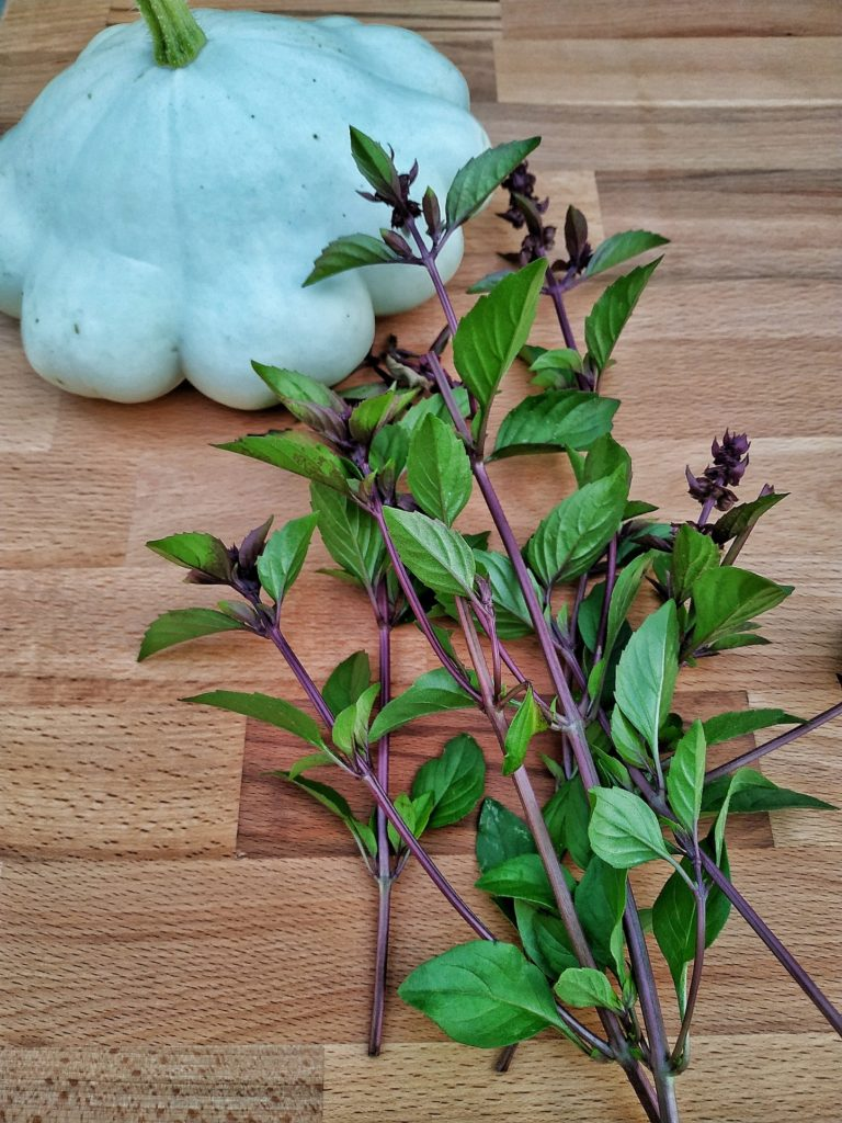 Grünes Thai Kürbis Curry aus dem Dutch Oven